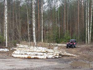 Kiinteistönhuoltopalvelut Pohjois-Savossa - Metsätyöt ja puunhakkuut, FinMacGyver Oy