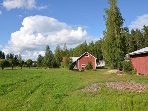 Kiinteistönhuoltopalvelut yksityisille Pohjois-Savossa - omakotitalot ja kesämökit, FinMacGyver Oy